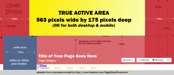 True Active Area Facebook Cover image